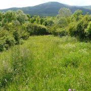 Chantier Nature : fauche, ratissage et rangement au Dorenberg