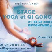 Stage de Yoga et Qi Gong