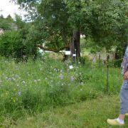 Pourquoi et comment favoriser la biodiversité dans vos jardins ?