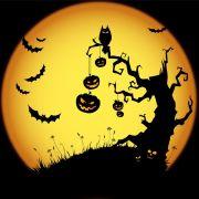 Les 6 Trouilles d\'Halloween