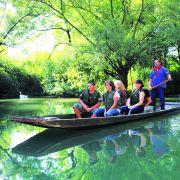 Alsace Ecotourisme : Embarquez pour la jungle rhénane