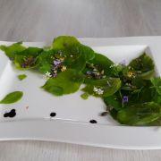 Sylvothérapie et cuisine en forêt