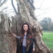 Contes et danse : À la lueur des arbres
