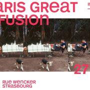 Solaris great confusion ( indie folk )