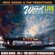 Nico Chona & The Freshtones (blues rock) + The Dusty Springfields chez Wood Stock Guitares