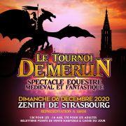 Le Tournoi de Merlin : spectacle équestre médiéval et fantastique !
