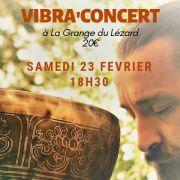 Vibra\'Concert