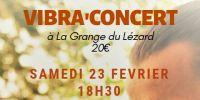 vibra'concert