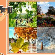 Concours Photo : Niederbronn-les-Bains au fil des saisons