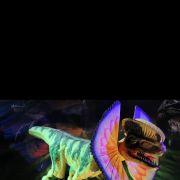 Dino Expo à Erstein