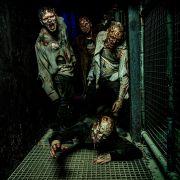 Casting des « Horror Nights - Traumatica »