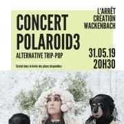 Concert de Polaroid3