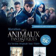 Marathon - Animaux Fantastiques 1 & 2