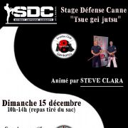Stage Défense Canne