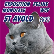 Exposition Internationale Féline