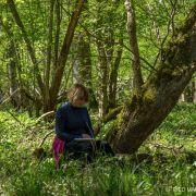 Ce que racontent les arbres