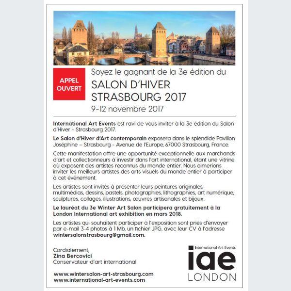 Salon d hiver d art contemporain 2017 appel for Salon bio strasbourg 2017