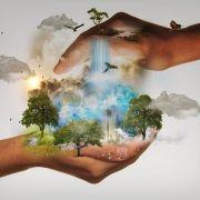 Méditation pour la Terre - En ligne via Zoom