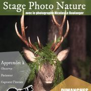 Stage photo nature