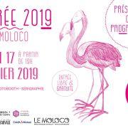 Rentrée 2019 - Présentation de la prog \' - Moloco