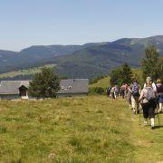 Marche Gourmande de Montagne au Markstein