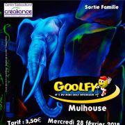Sortie Famille au Goolfy de Mulhouse