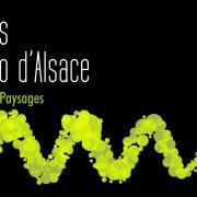 Rendez-vous des vignerons bio d\'Alsace