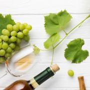 Dégustation de vins d\'Alsace