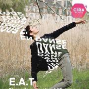 Stages de préparation à l\'Examen d\'Aptitude Technique E.A.T Jazz