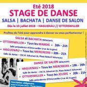 Stage d\'été Danse de salon et Danse enfant