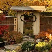 Visite d'un Jardin Japonais traditionnel