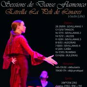 Stage de danse Flamenco