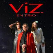 ViZ en trio
