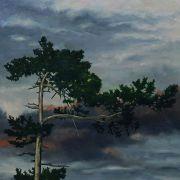 De cimes en cimes •  Exposition de peintures de Harry Franz