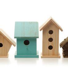 Atelier enfants - Petits oiseaux venez...
