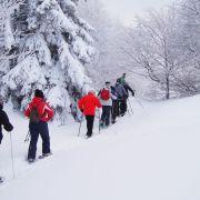 Séjour Raquettes à neige