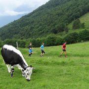 Rando trail : le Rossberg