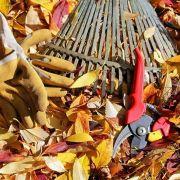 Jardinage au naturel - Préparer mon potager pour l\'hiver