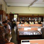 Visite guidée au Musée de minéralogie