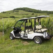 Balade dans les vignes en voiture électrique