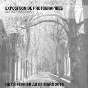 Photographies - Opus n°2