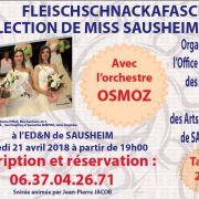 16ème Fleischschnackafascht et élection de Miss Sausheim