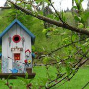 Atelier parent-enfant : Crée ton propre nichoir à oiseaux !