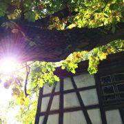 Légendes et couleurs d'automne