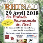 Balade Gourmande du Ried à Rhinau
