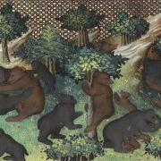 Un ours bien léché, le thème de l\'ours chez Hildegarde de Bingen