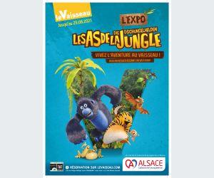 Les As de la Jungle - l\'Expo