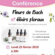 Fleurs de Bach et élixirs floraux