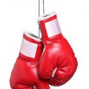 Gala de Boxe Anglaise