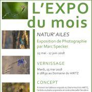 Natur'ailes - Marc Specker
